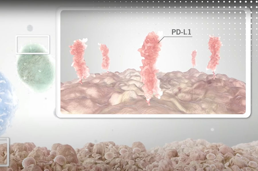 Impact of checkpoint inhibitor therapies on a patients' immunogenicity status
